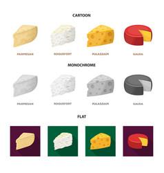 Parmesan roquefort maasdam gaudadifferent vector