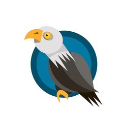 range of icon design with the american eagle vector image