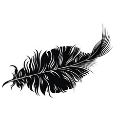 tattoo feather vector image