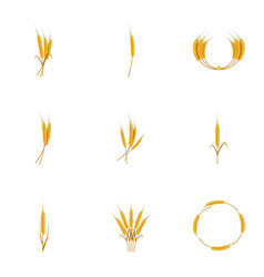 types of wheat icons set cartoon style vector image