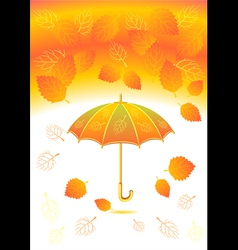 Autumn background with leaves umbrella vector image
