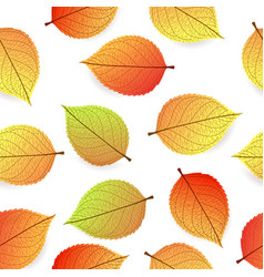background with stylized autumn leaves vector image