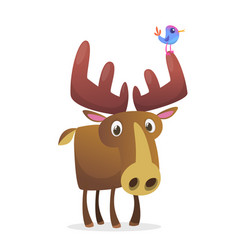 cool carton moose isolated vector image