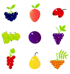 Fresh summer berries and exotic fruit set isolated vector
