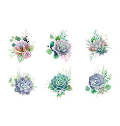 Greenery and succulent bouquets for wedding card vector