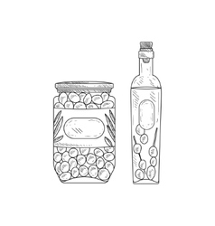 Jar Of Olives And Bottle Olive Oil Hand Drawn vector