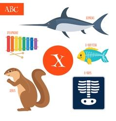 Letter X Cartoon alphabet for children Xylophone vector image vector image