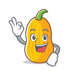 Okay butternut squash character cartoon vector