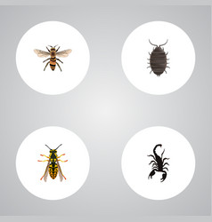 Realistic wasp poisonous bee and other vector