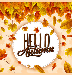 round label with falling leaves vector image