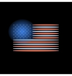 American flag neon light vector image