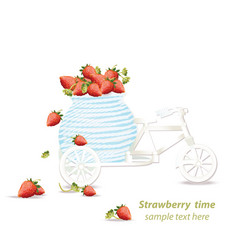 mixed cherry and berry decoration bycicle vector image