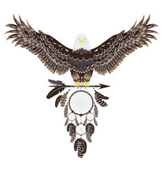 Bald eagle with dreamcatcher vector