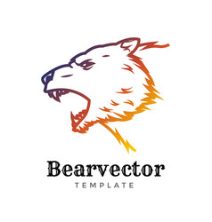 bear sport logo concept isolated on white vector image
