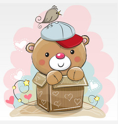 birthday card with a cute teddy vector image