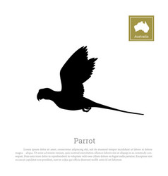 black silhouette a parrot on a white background vector image