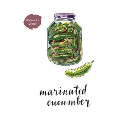 glass jar of marinated cucumbers vector image