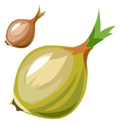 Ripe delicious onion closeup in cartoon style vector image