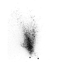 sprayed graffiti effect in black on white vector image vector image