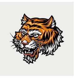 Colorful ferocious tiger head vector