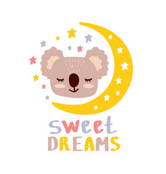 cute koala sweet dreams vector image