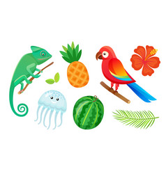 exotic animals fruits and plants summer vacation vector image