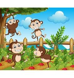 Four monkeys in the vegetable garden vector