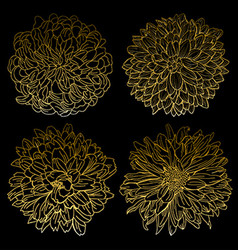 Golden chrysanthemums set vector