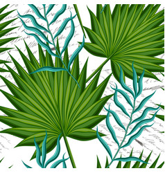 Leaves palm trees vector