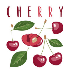 set cherries with lettering vector image