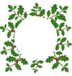 green branches of an oak with acorns on a circle vector image vector image