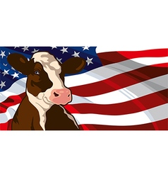 Cow and USA flag vector image vector image