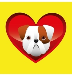 bulldog face icon design vector image