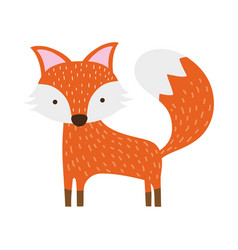 Colorful cute fox wild animal of the forest vector