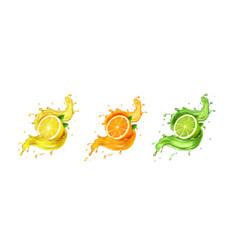 juice splash lemon orange lime set vector image