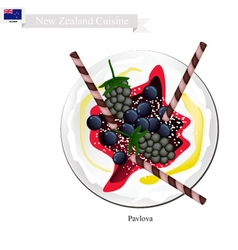 Pavlova Meringue Cake With Berries New Zealand vector image