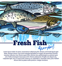 Poster for fresh fish or seafood market vector