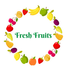 fruits and berrie in a ring vector image