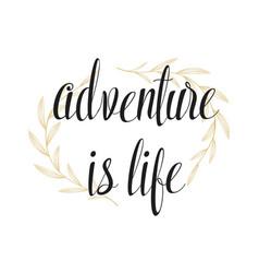 adventure is life hand written lettering vector image