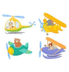 Cute animals on air transport animal pilot pet vector