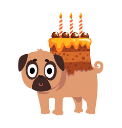 Cute funny pug dog character with a festive cake vector