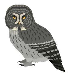 Great grey owl birds isolated vector