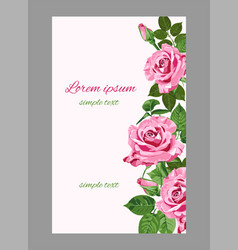 Pink roses wedding invitations or greeting card vector