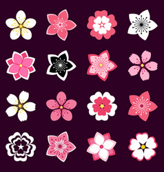 Set of cherry blossom flowers icons vector