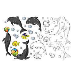 set of colored dolphins and fish isolated on white vector image