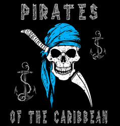 Skull pirates graphic design vector