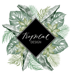 tropical palm leaves jungle round vector image