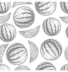 Seamless watermelon pattern Fresh fruit skech vector image