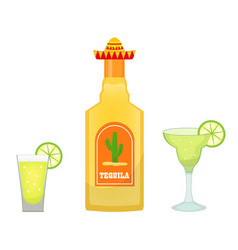 tequila bottle with glasses and pieces of lime vector image
