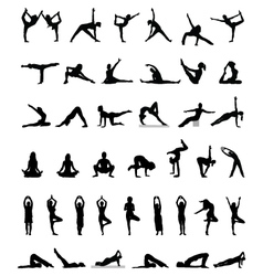 oga and fitness vector image